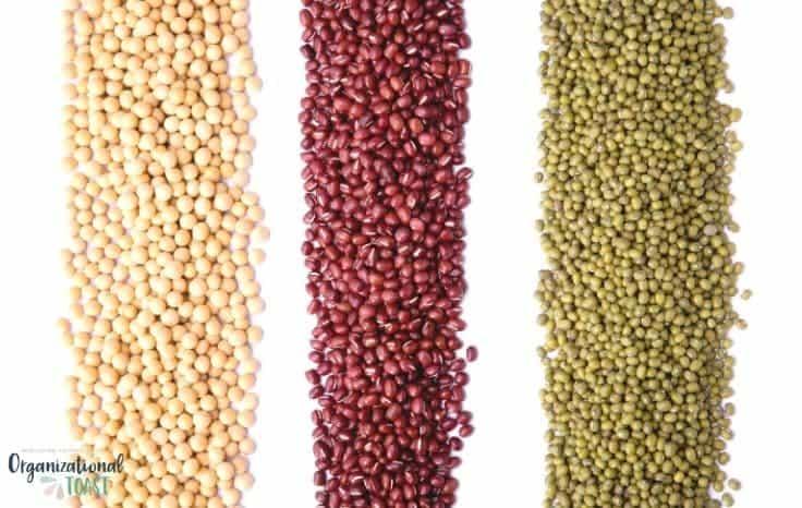 Dried beans as cheap proteins