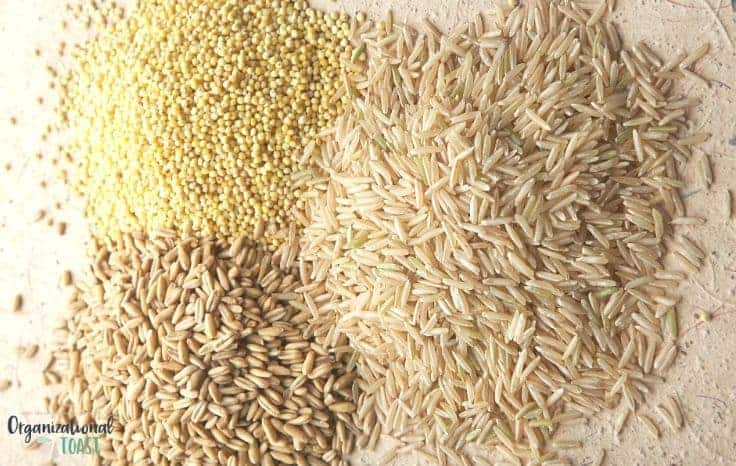 Rice and other cheap carbohydrates