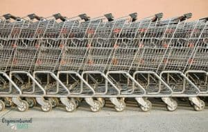Grocery Shopping Carts